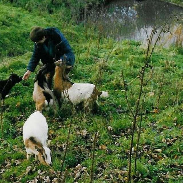 Promenade champêtre avec la chèvre Sybelle