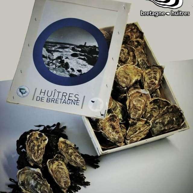 Bretagne Huîtres