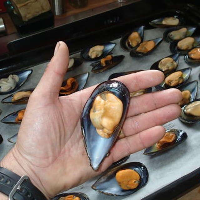Meskler Treger – Les Moules de Locquémeau