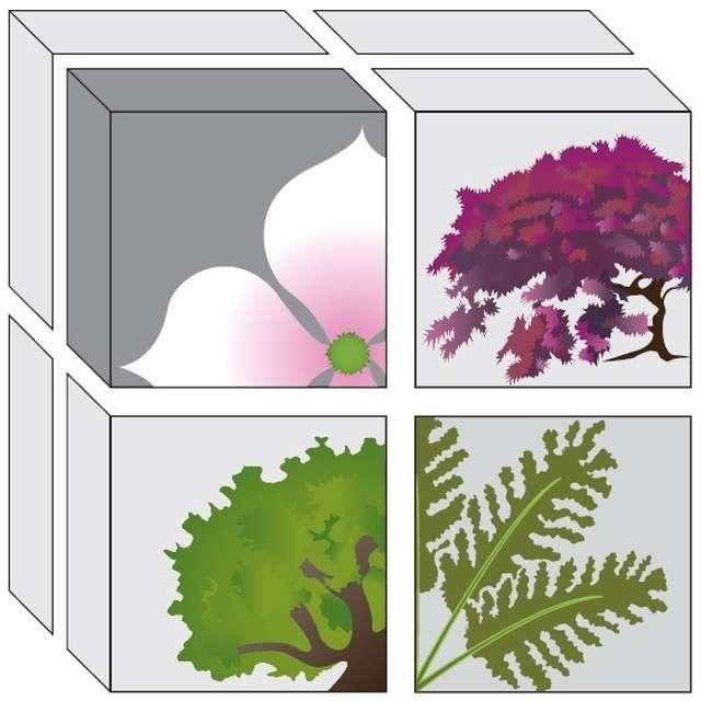 Conception de jardin et livraison à domicile pendant le confinement
