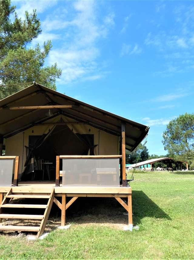 Lodge Kilimandjaro