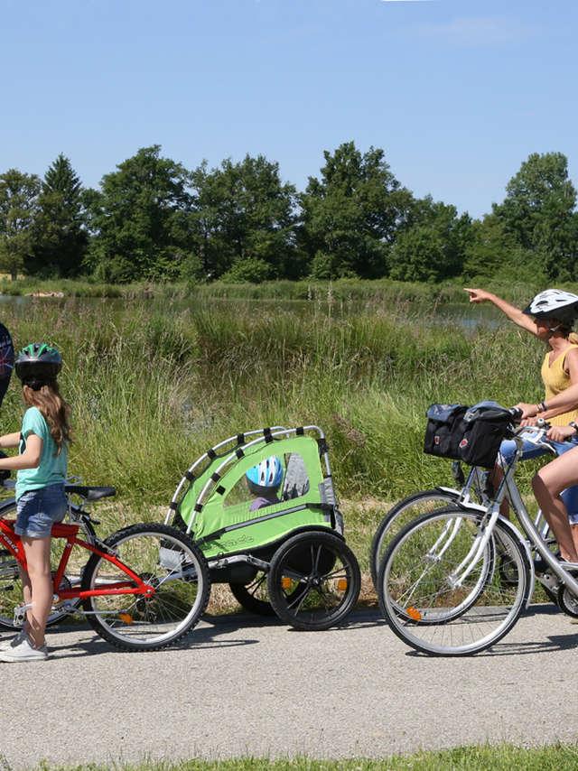 Domaine de la Dombes - Location de vélos