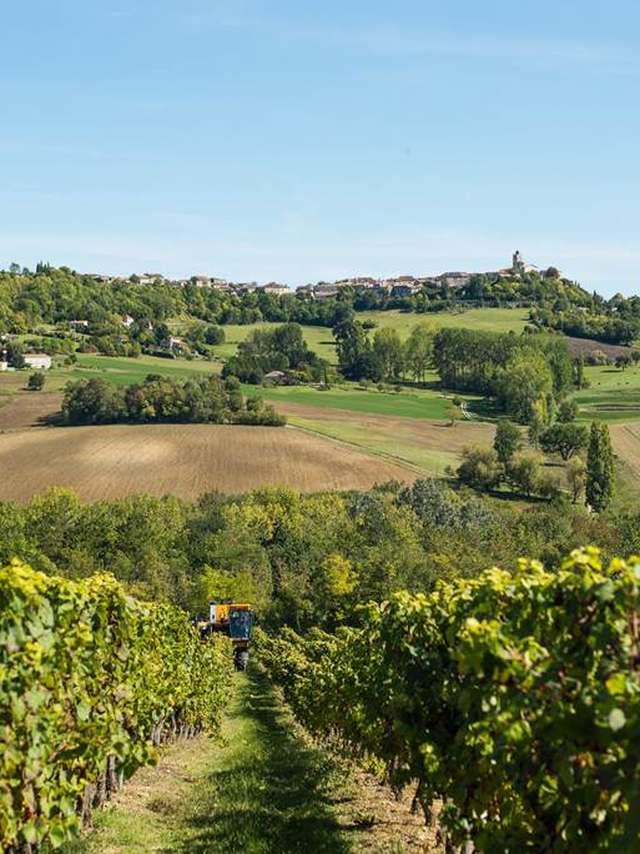 La Cave des Vignerons du Quercy