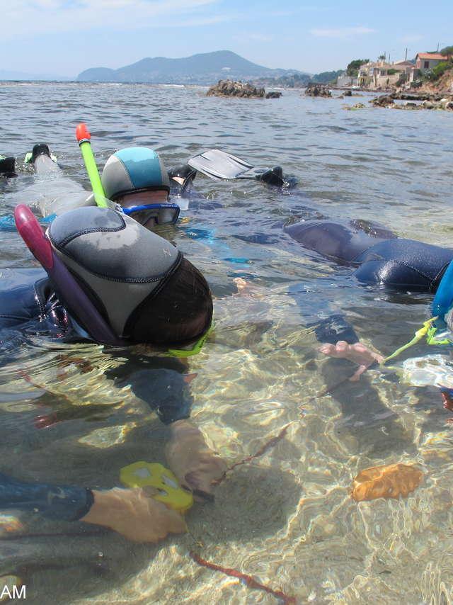 Sentier marin archéologique d'Olbia, balade aquatique accompagnée