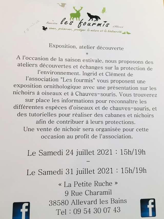 Exposition, atelier découverte à laPetite Ruche
