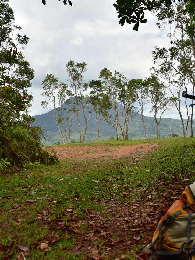 VTT Piste Panoramique - Parc des Grandes Fougères-