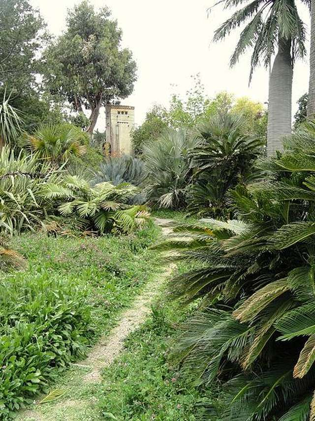 Jardin de la Villa Thuret