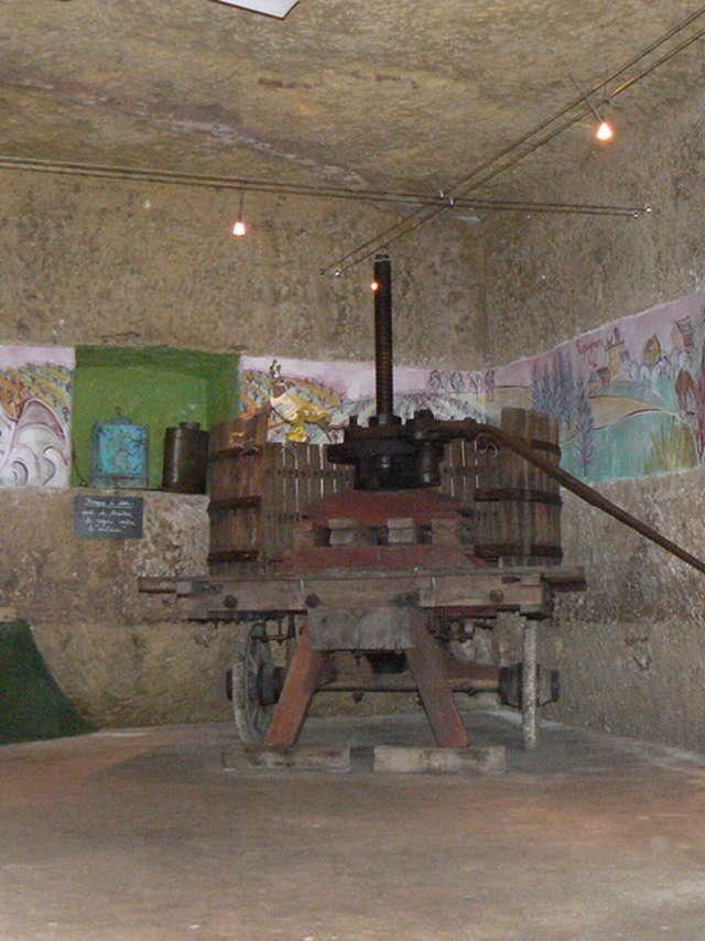 Conservatoire de la vigne et musée de la vigne et du vin