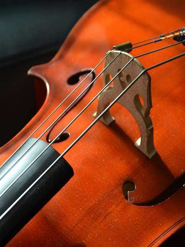 Festival de musique de Pontlevoy - Robert Schumann…. Passionnement, à la folie !