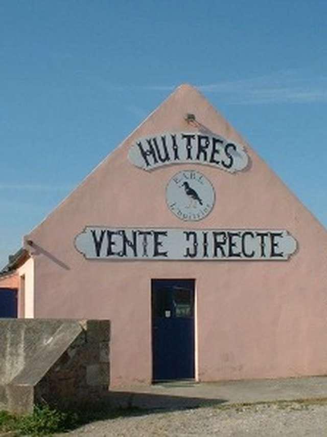 L'Huîtrier