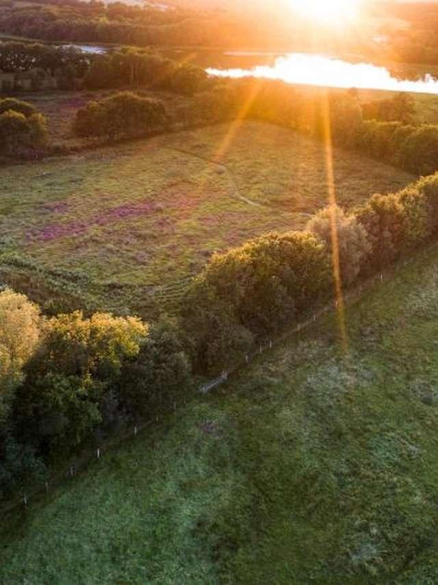 Léguer en Fête - Réserve naturelle de Plounérin, un espace remarquable de Bretagne