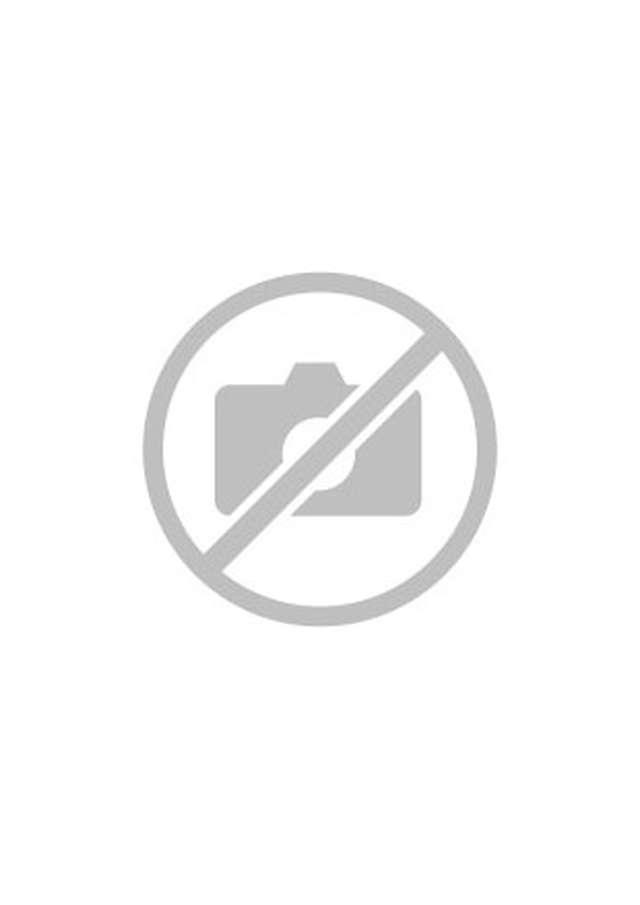 Bird watching in old salt marshes (Salins)