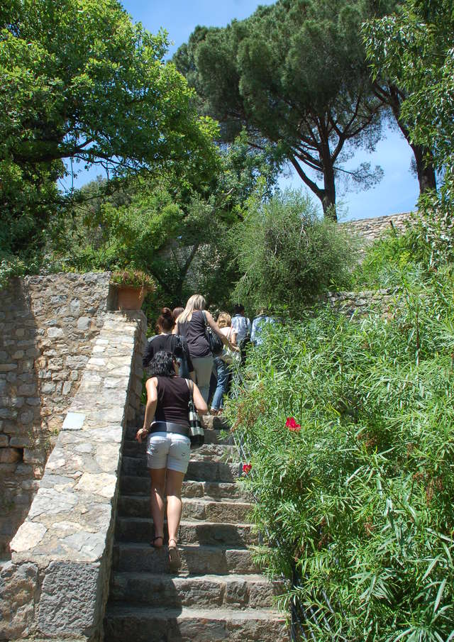 All the gardens of the world - Guided tour