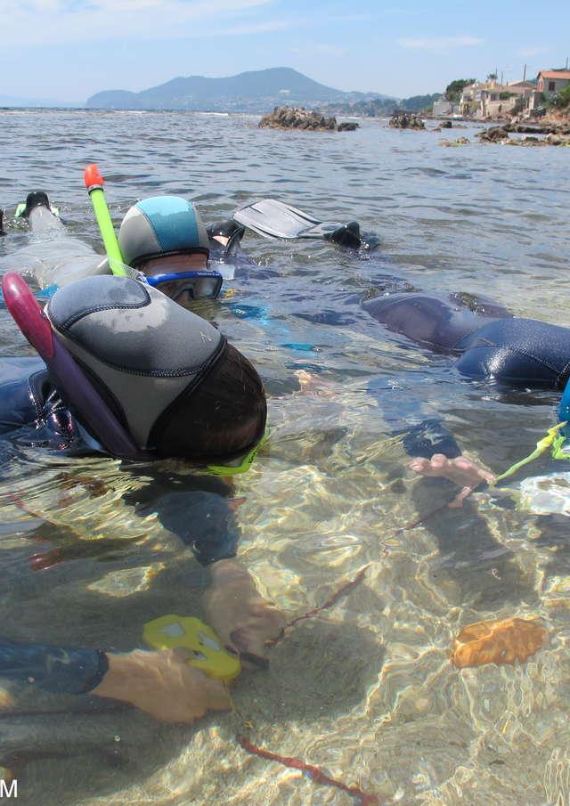 Archaeological marine trail of Olbia