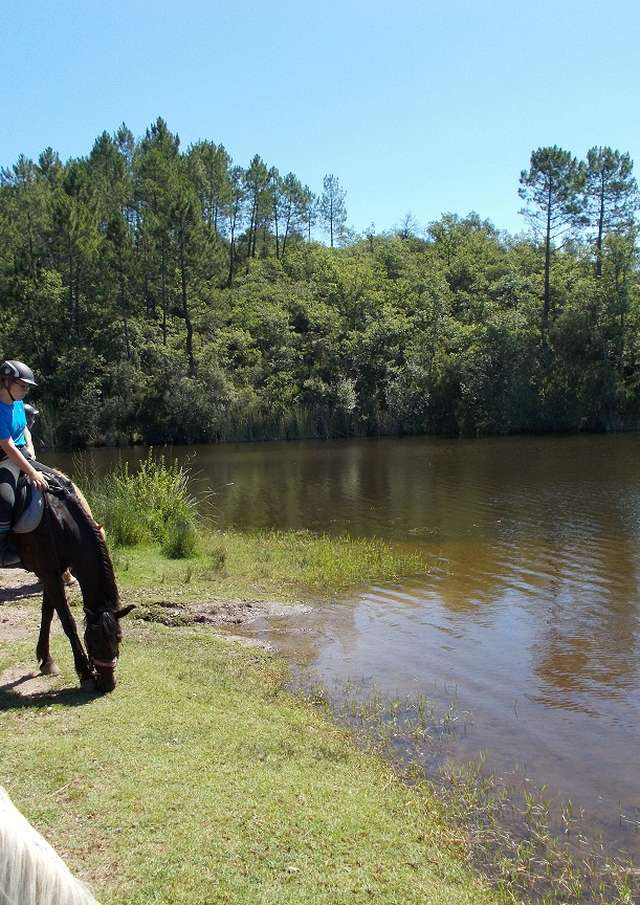 Haras des Villards : Balade à cheval