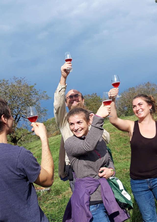 Balade apéritive dans les vignes
