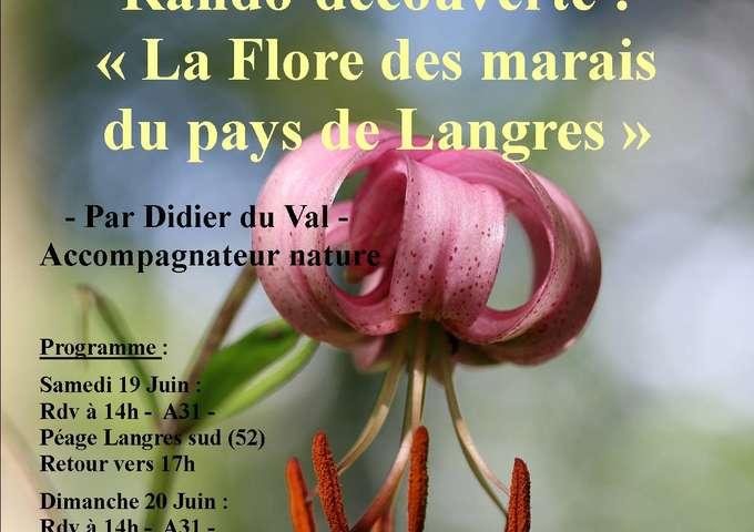 Rando-découverte : La flore des marais du pays de Langres