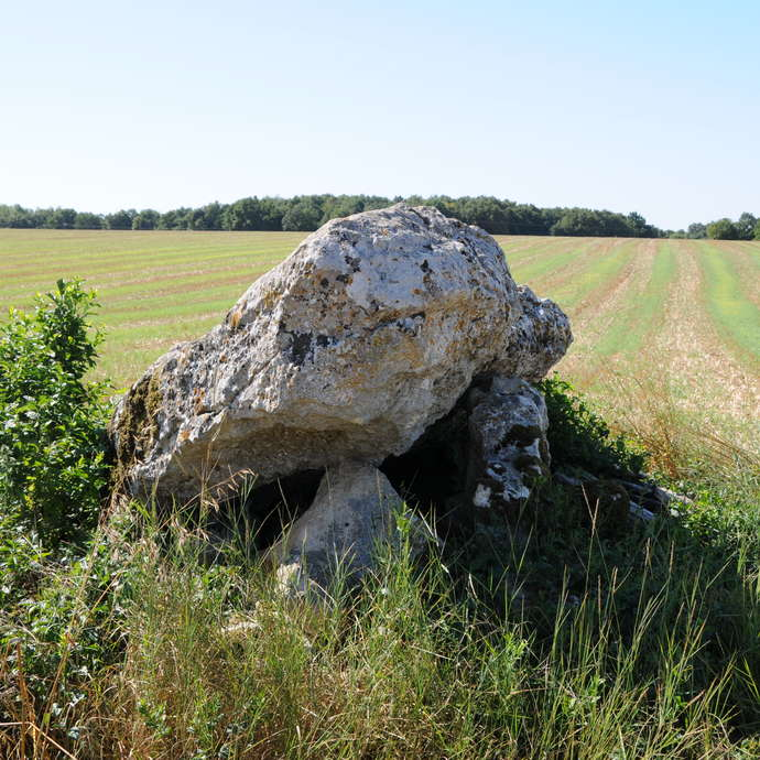 The Villaigue Dolmens