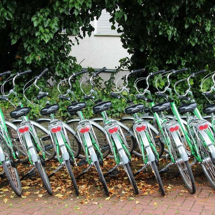 Location de vélos - Saint Pierre de Maillé