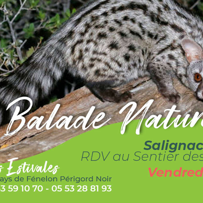 ÉTÉ ACTIF : Balade naturaliste à Eyvigues