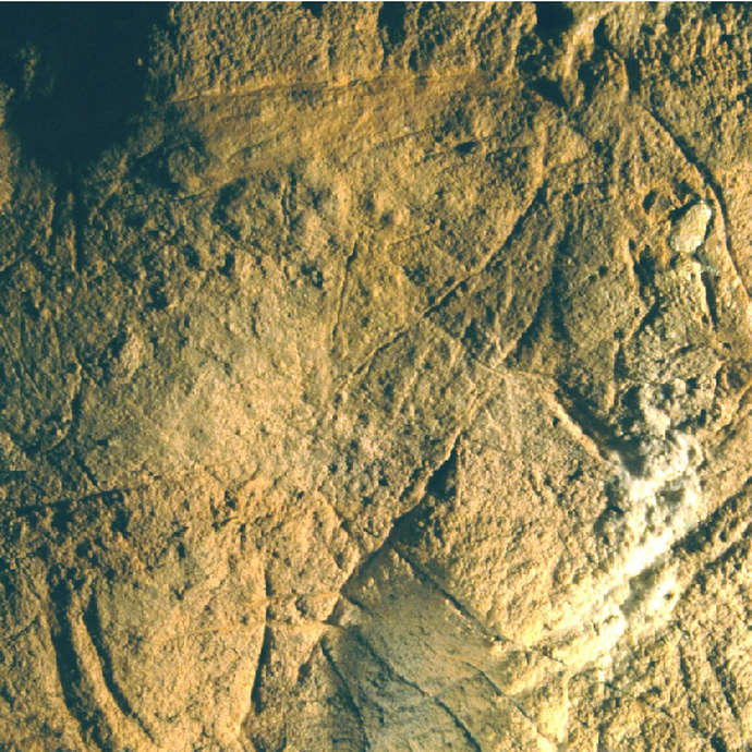 Journées du patrimoine : Grotte des Combarelles