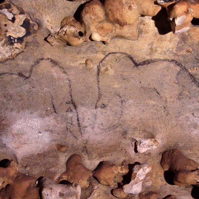 """Journées du patrimoine : Découvrez """"la grotte aux cent mammouths"""""""