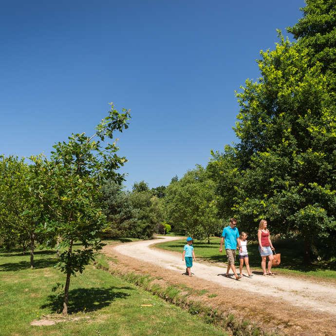 Arboretum de Carnivet