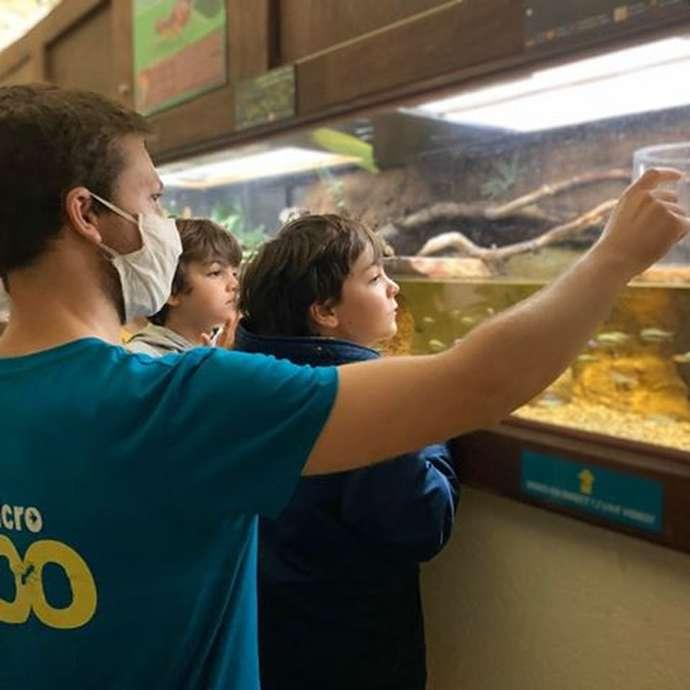 Micro Zoo