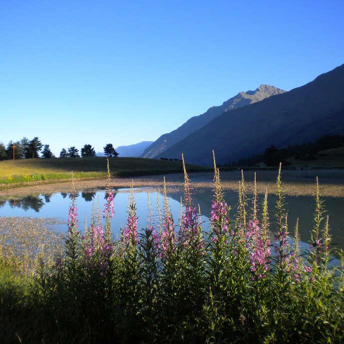 Aire de pique-nique du Lac de Barbeyroux