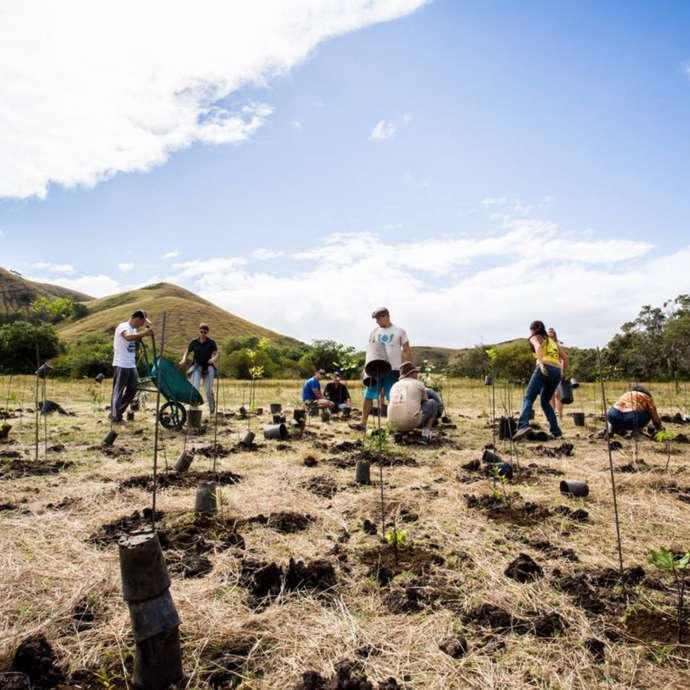Plantation participative au Domaine de Deva
