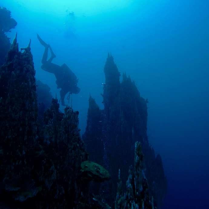 Mobula Diving : Centre - École de plongée