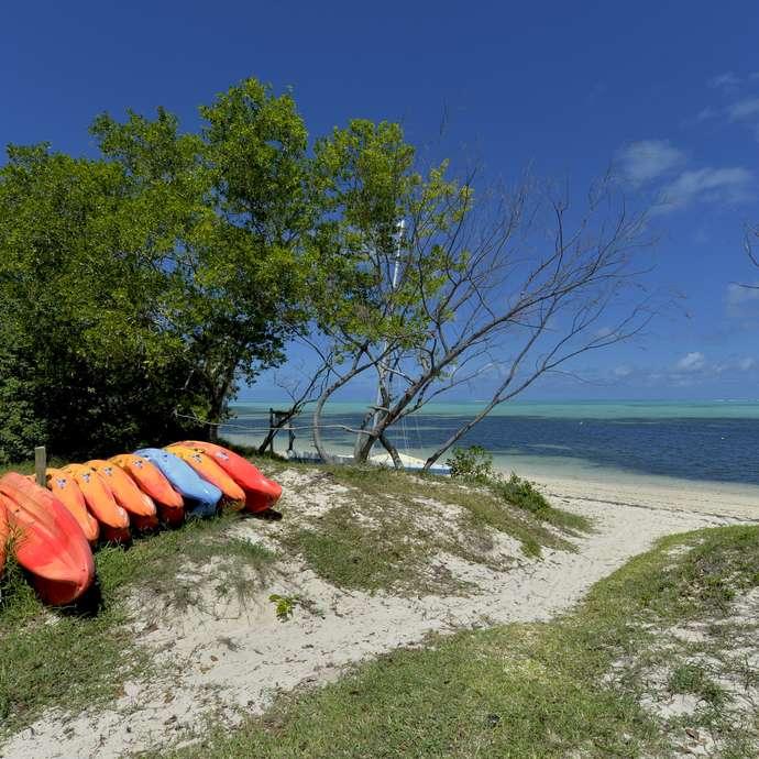 Location kayak et paddle - Snack L'Alizé