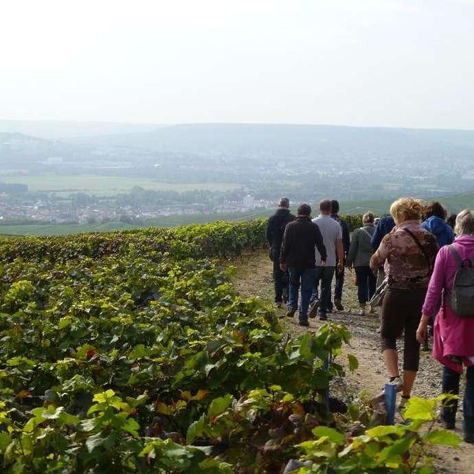 Le Sentier du Vigneron