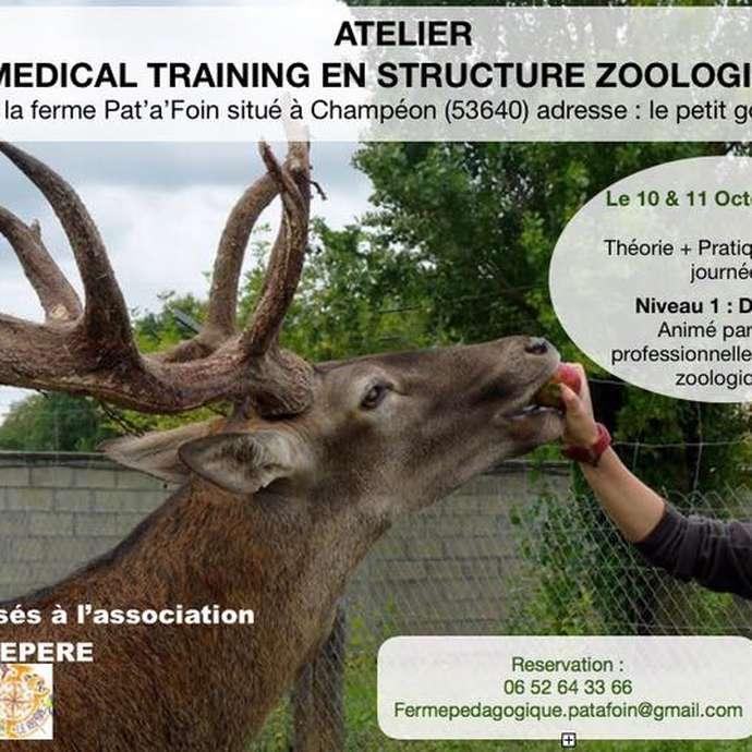 ATELIER MÉDICAL TRAINING EN STRUCTURE ZOOLOGIQUE
