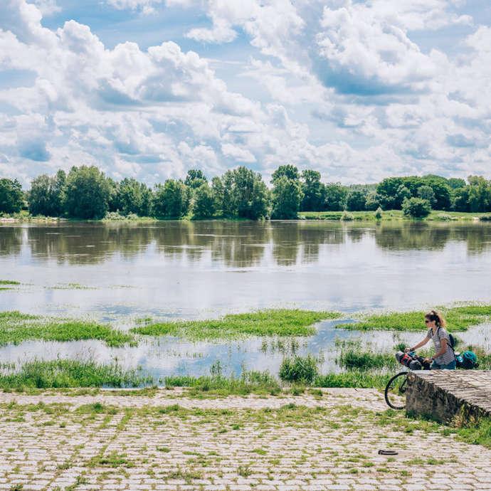 Boucle vignoble Loire Layon Aubance
