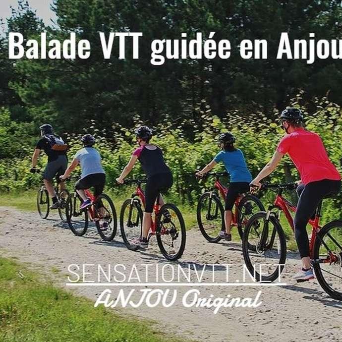 Sensation VTT