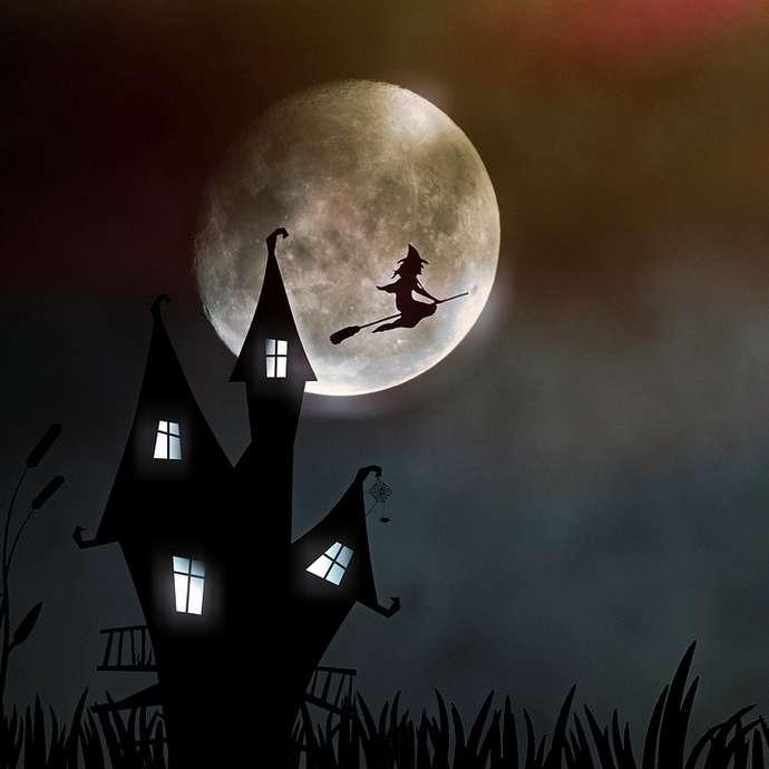 [ANIMATION CONFIRMEE] - Fête d'Halloween
